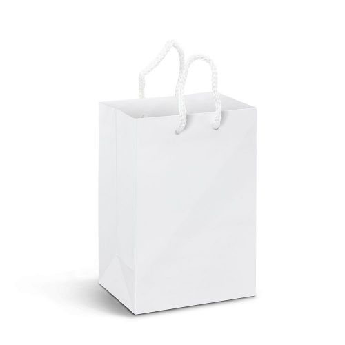 Small Laminated Paper Carry Bag - Full Colour