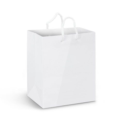 Medium Laminated Paper Carry Bag – Full Colour