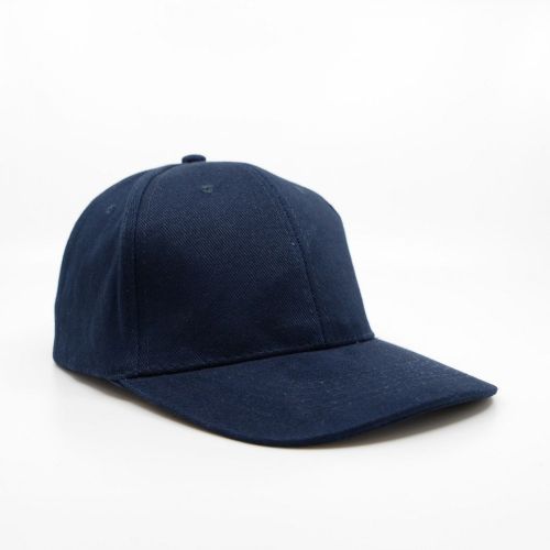 HW24 Value 6 Panel Brushed Cotton Cap