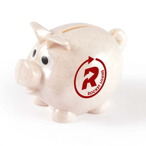 World\'s Smallest Pig Eco Coin Bank