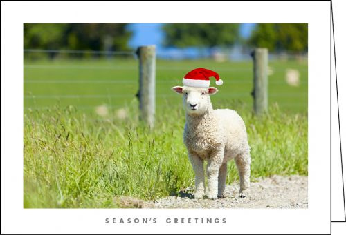 NZ902 - Sheep Santa